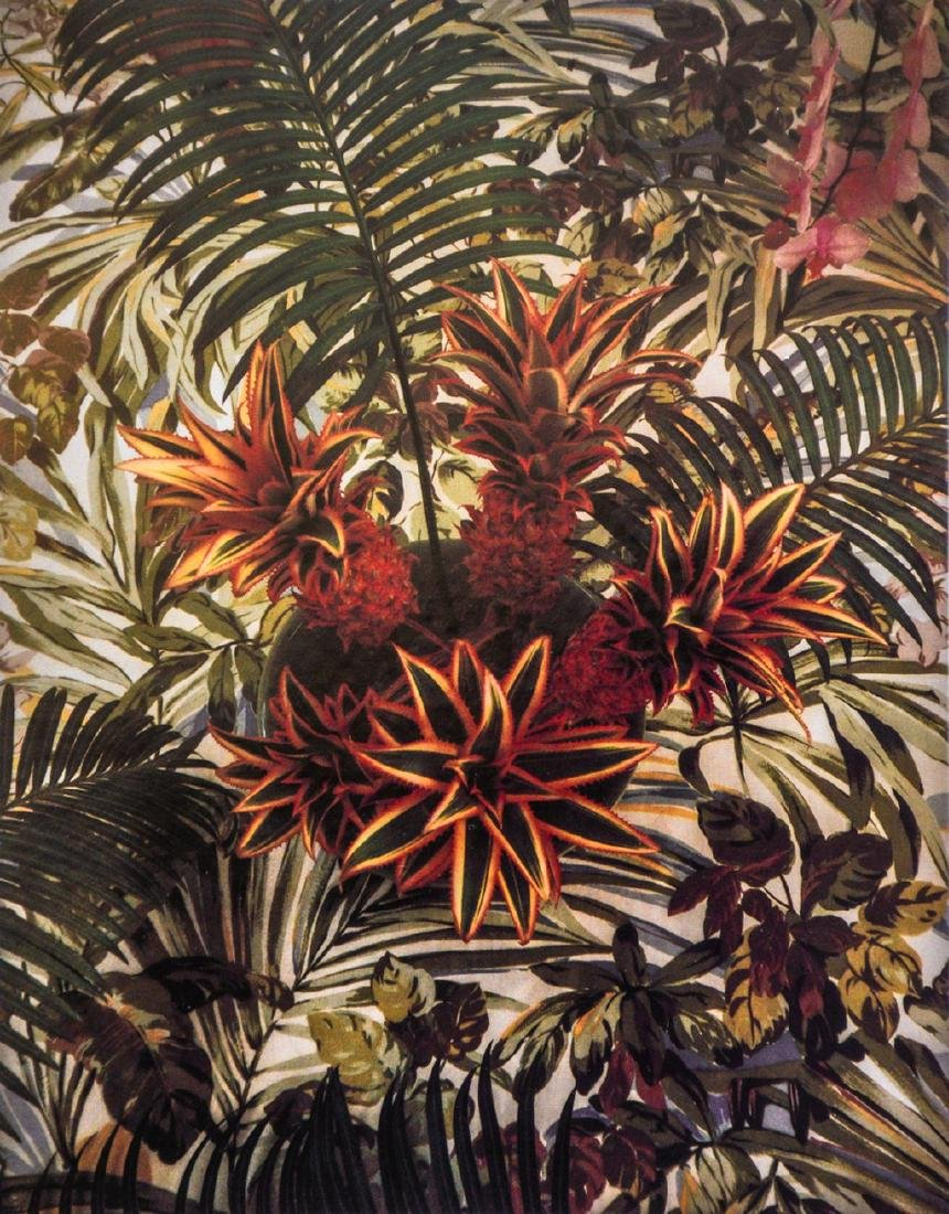 DON WORTH - Ornamental Pinapple, 1985