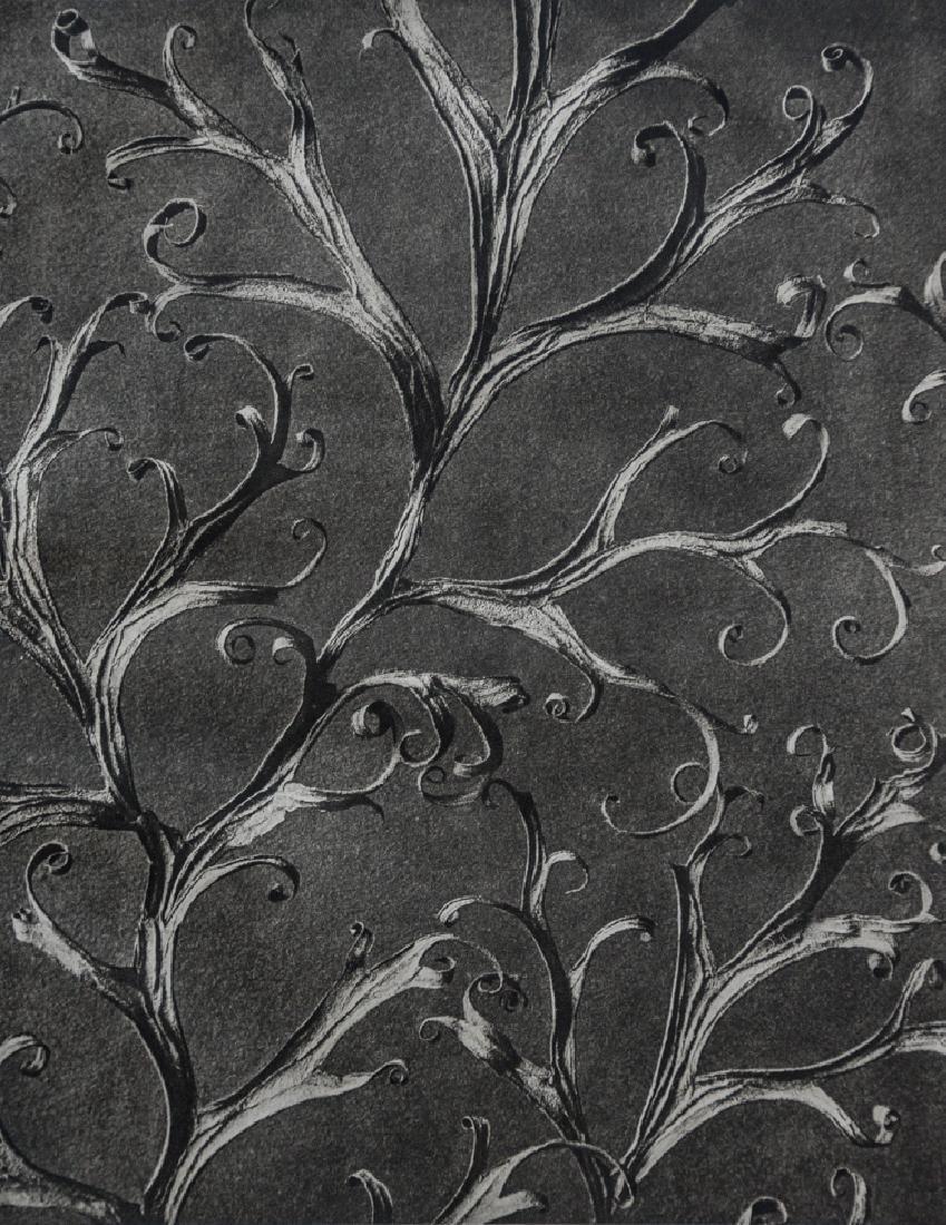 KARL BLOSSFELDT - Delphinium Rittersporn