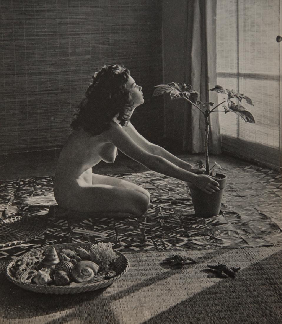 ANDRE DE DIENES - Nude With Plant