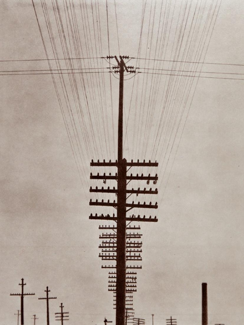 TINA MODOTTI - Electric wires