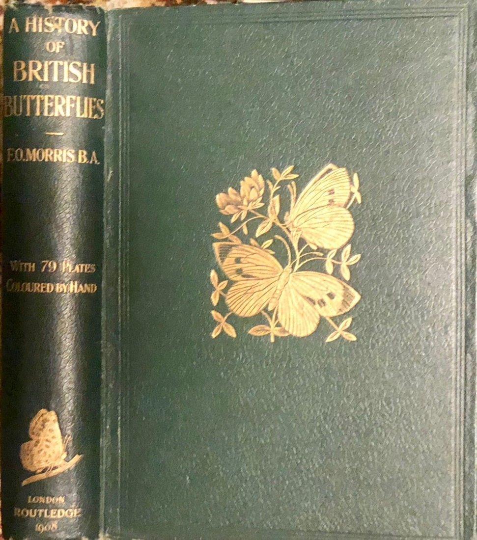 1908 F.O.Morris HISTORY of BRITISH BUTTERFLIES