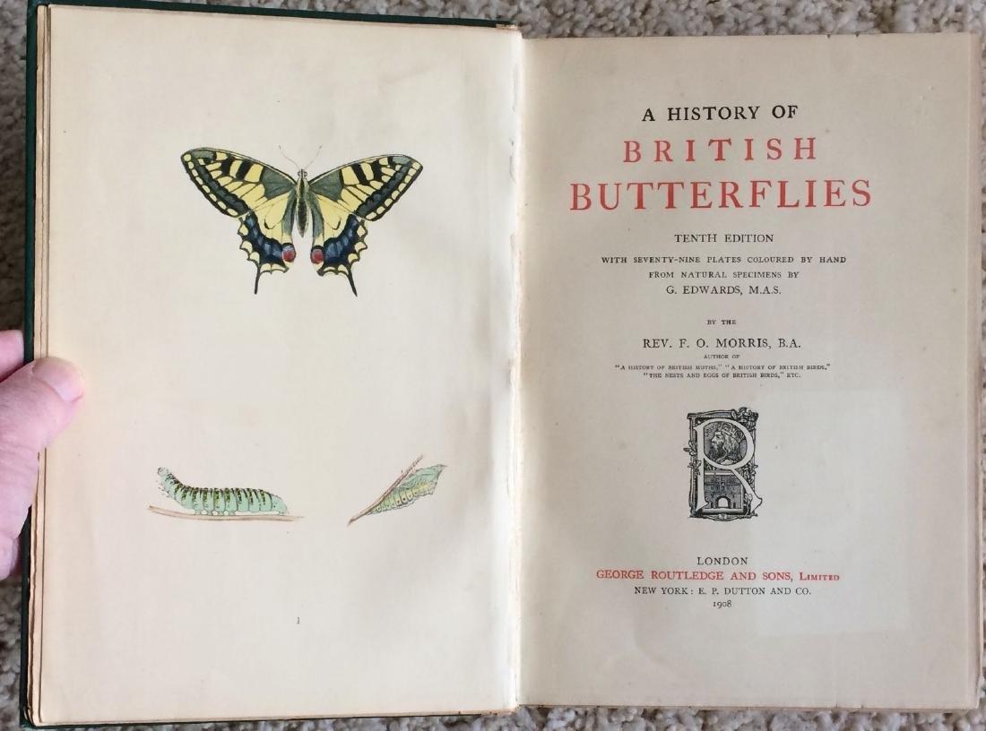 1908 F.O.Morris HISTORY of BRITISH BUTTERFLIES - 2