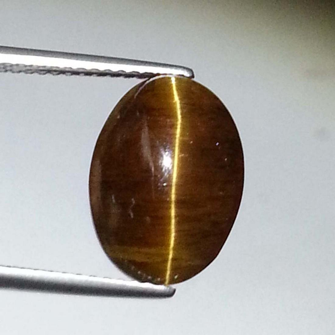 Top Grade Glowing Honey Natural Apatite cat's Eye - - 2