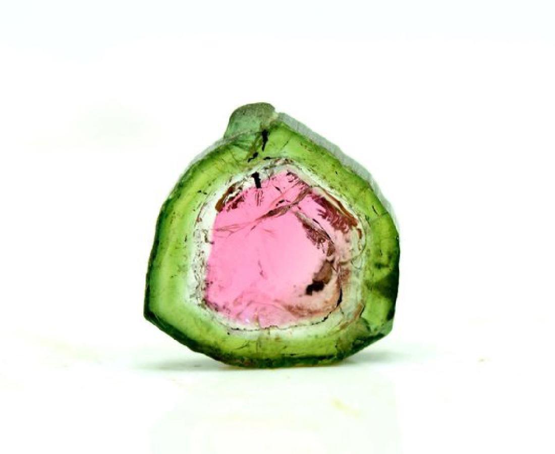 4.20 ct Perfectly Shaped Watermelon Tourmaline Slice - 5