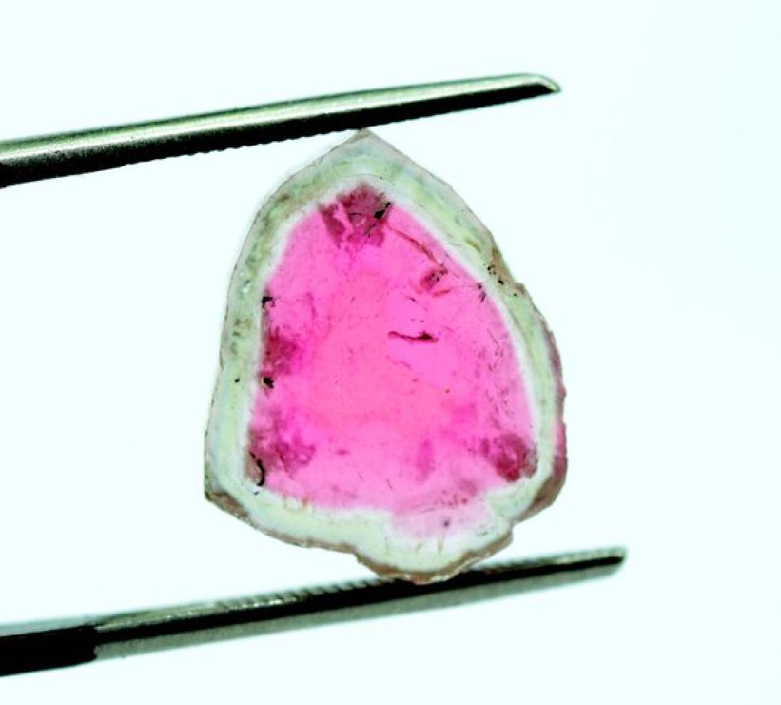 7 cts complete and undamage watermelon tourmaline slice