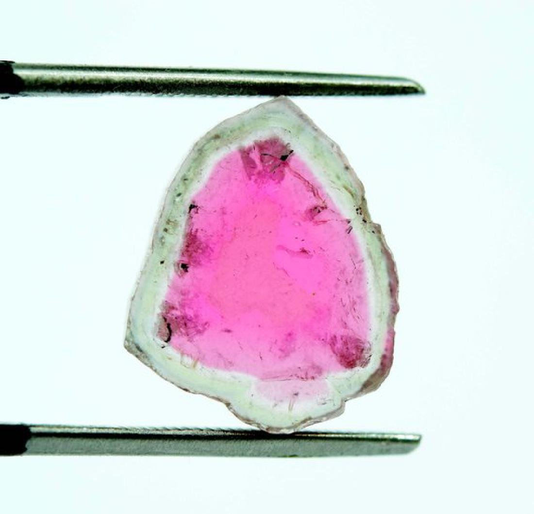 7 cts complete and undamage watermelon tourmaline slice - 2