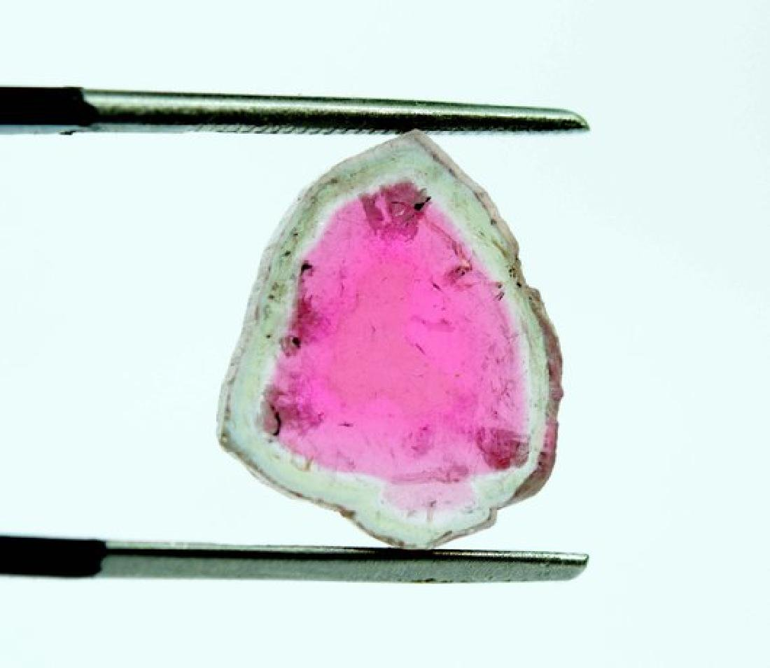 7 cts complete and undamage watermelon tourmaline slice - 4