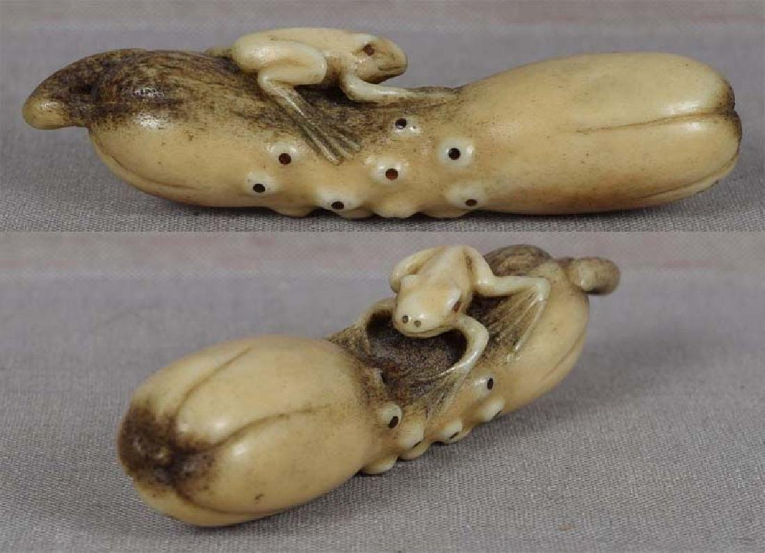 19c Asakusa staghorn netsuke FROG on CUCUMBER by RENSAI - 2
