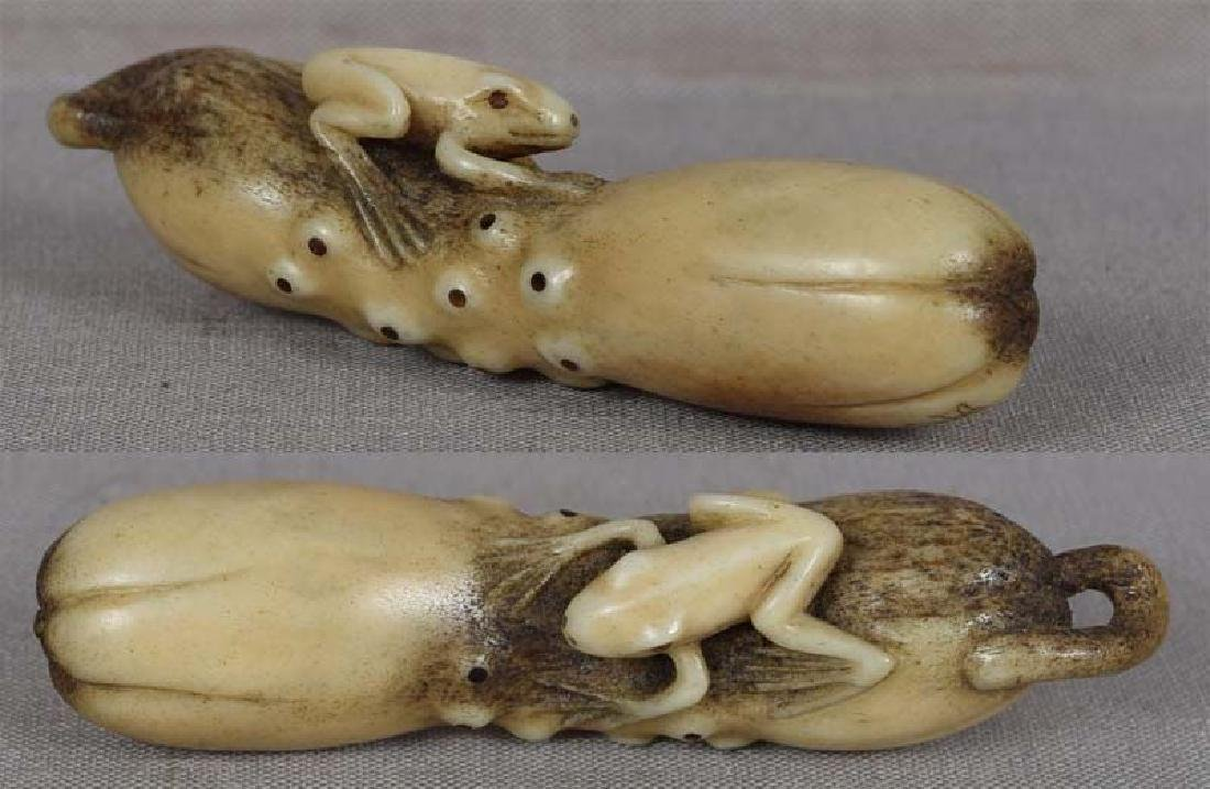 19c Asakusa staghorn netsuke FROG on CUCUMBER by RENSAI - 3