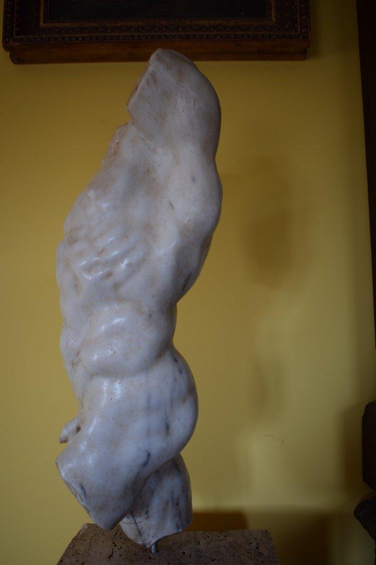 Torso in marble - 3
