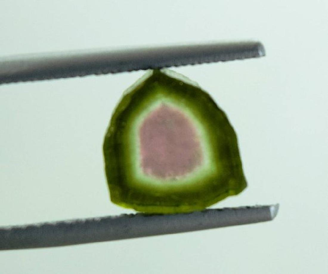 9.35 cts Top Quality Natural Watermelon Tourmaline - 6