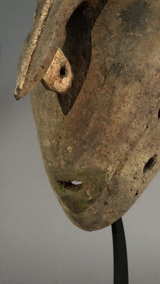 """First Class Dance Mask """"SIKA"""" from Sassoia - Boiken - 4"""