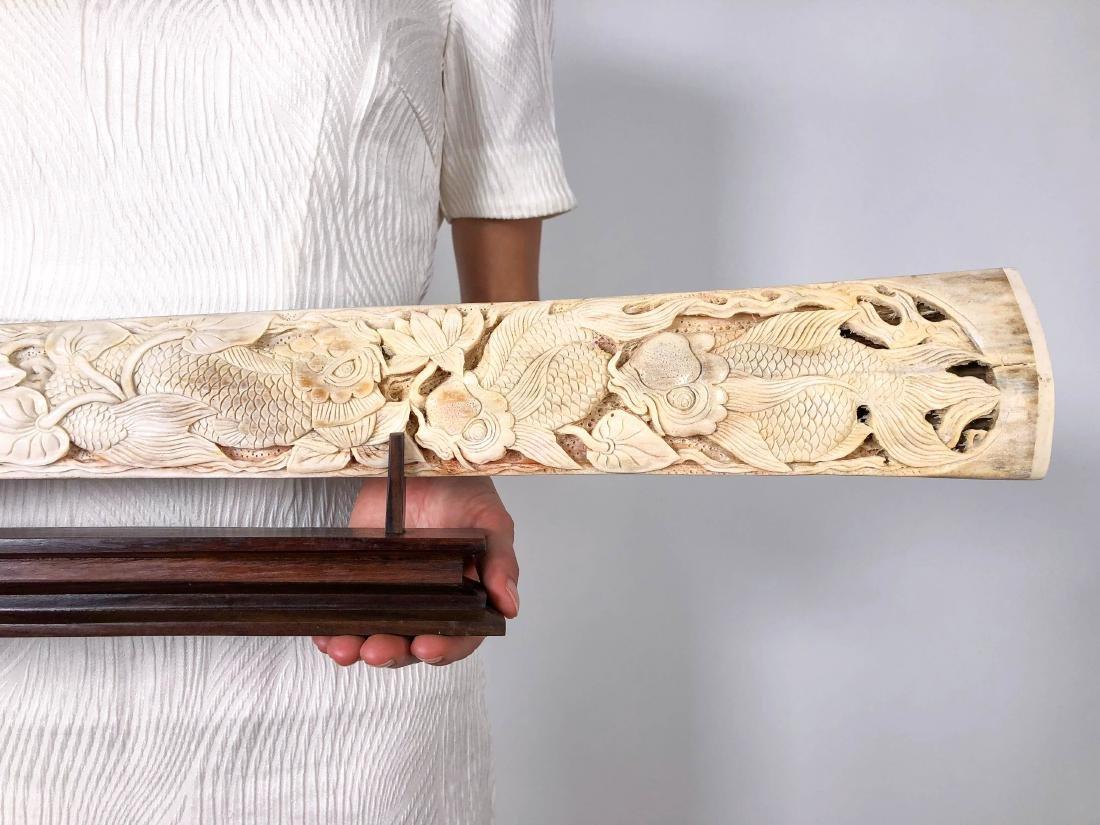 Stunning swordfish tusk with hand engraved Japanese koi - 2