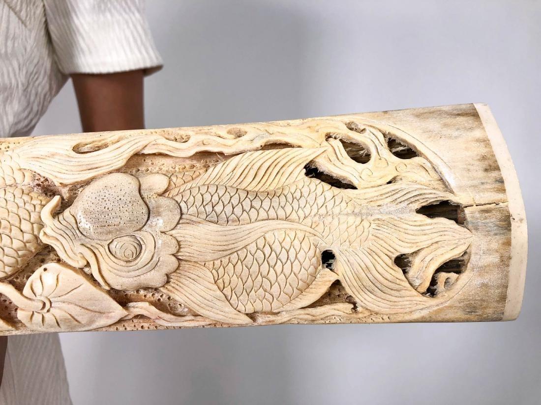 Stunning swordfish tusk with hand engraved Japanese koi - 5