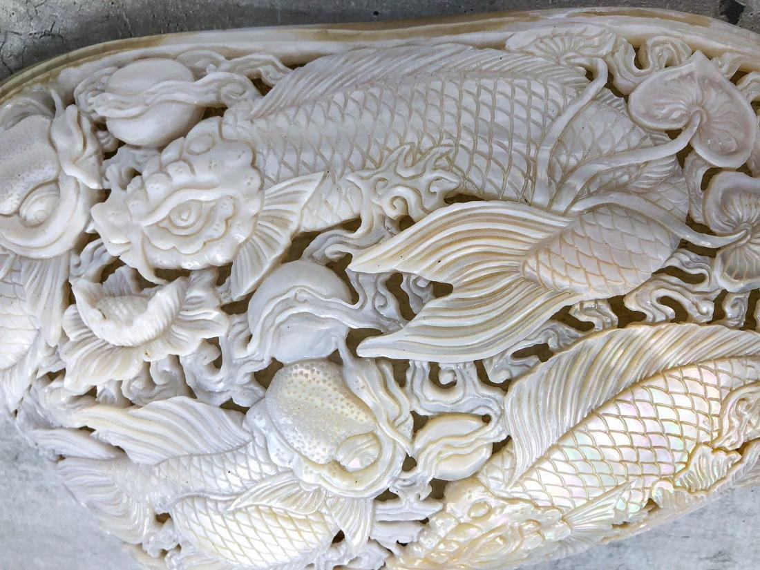 Giant engraved mother of pearl shell - Japanese KOI - 10