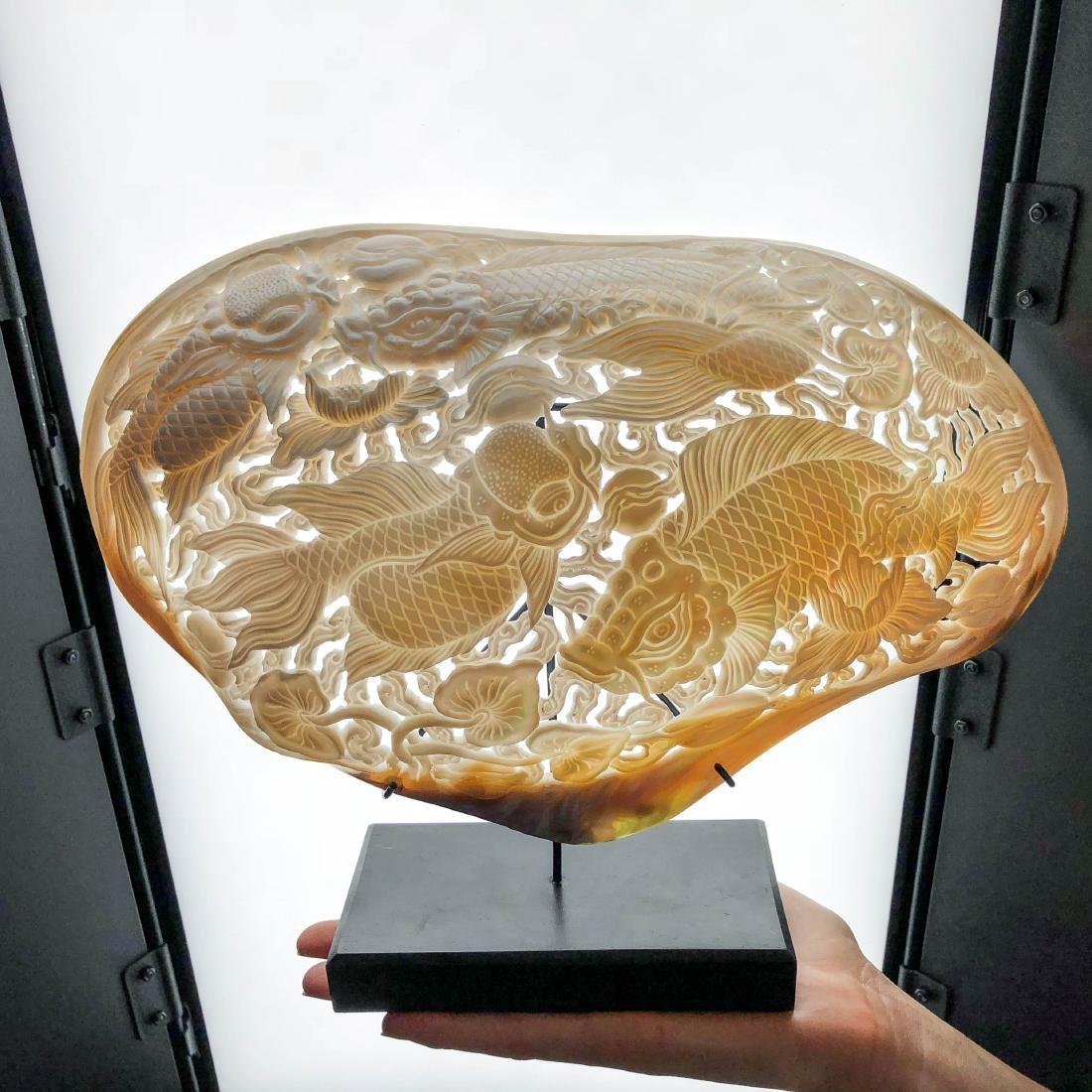 Giant engraved mother of pearl shell - Japanese KOI