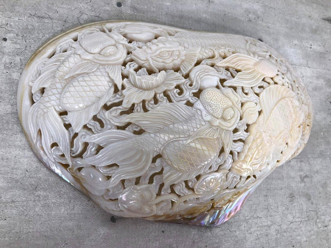 Giant engraved mother of pearl shell - Japanese KOI - 5