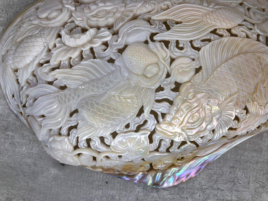 Giant engraved mother of pearl shell - Japanese KOI - 7