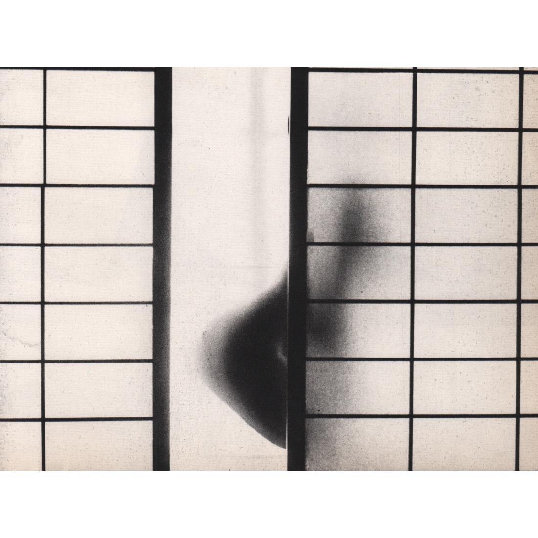 MINORU TANAKA - Lines and Curves