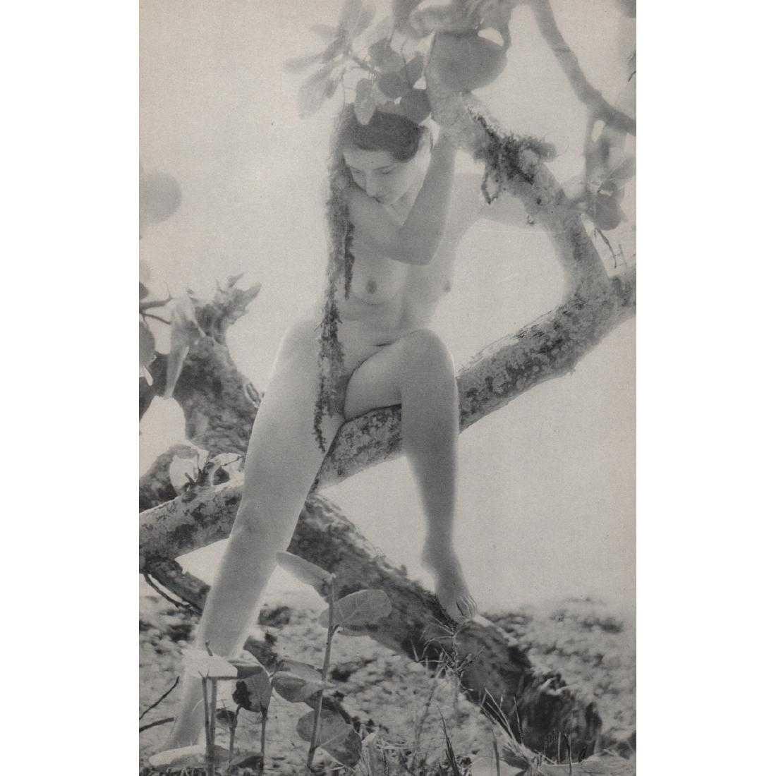 NELL DORR - In the Keys, 1929 - 2
