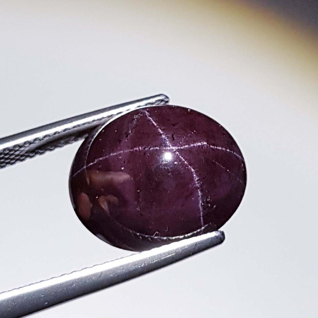 Natural Four Ray Star Garnet - 17.87 ct