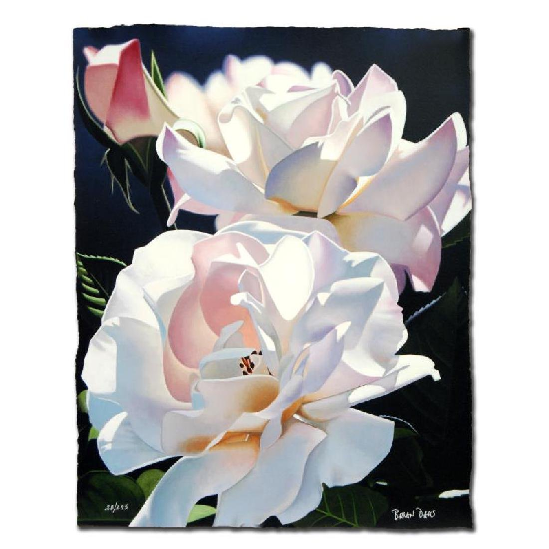 """Two White Roses"" Limited Edition Giclee by Brian"