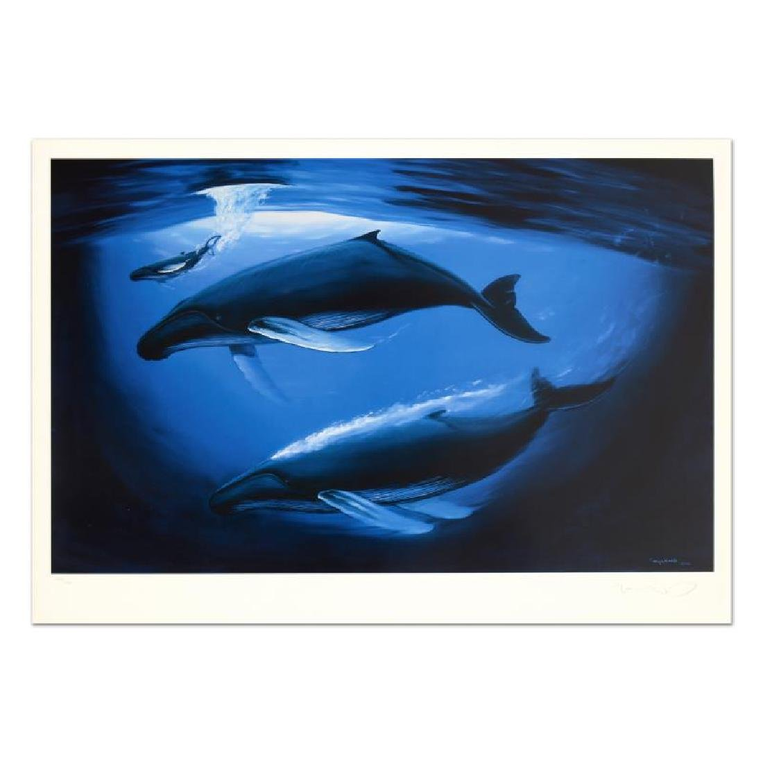"""A Sea of Life"" Limited Edition Lithograph by Renowned"