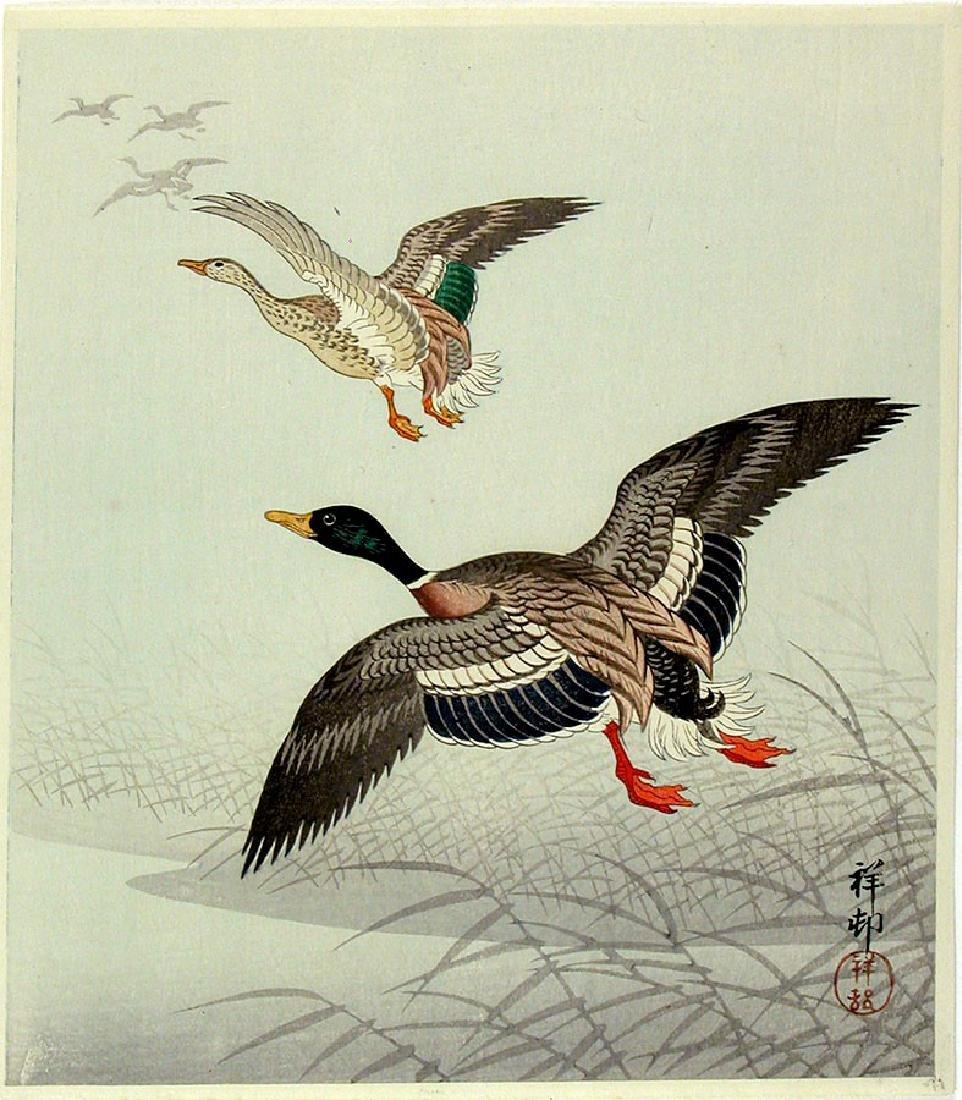 Ohara KOSON Woodblock Two geese