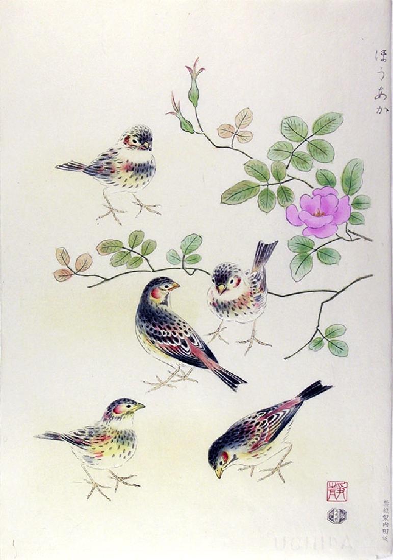 Shizuo ASHIKAGA Woodblock China Rose & Chestnut-eared