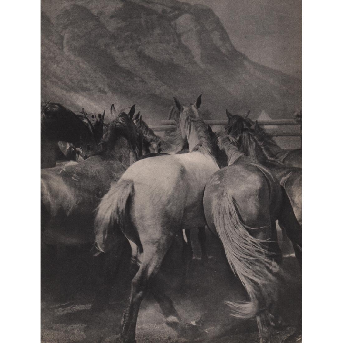 HANS CASPARIUS - Horse Roundup