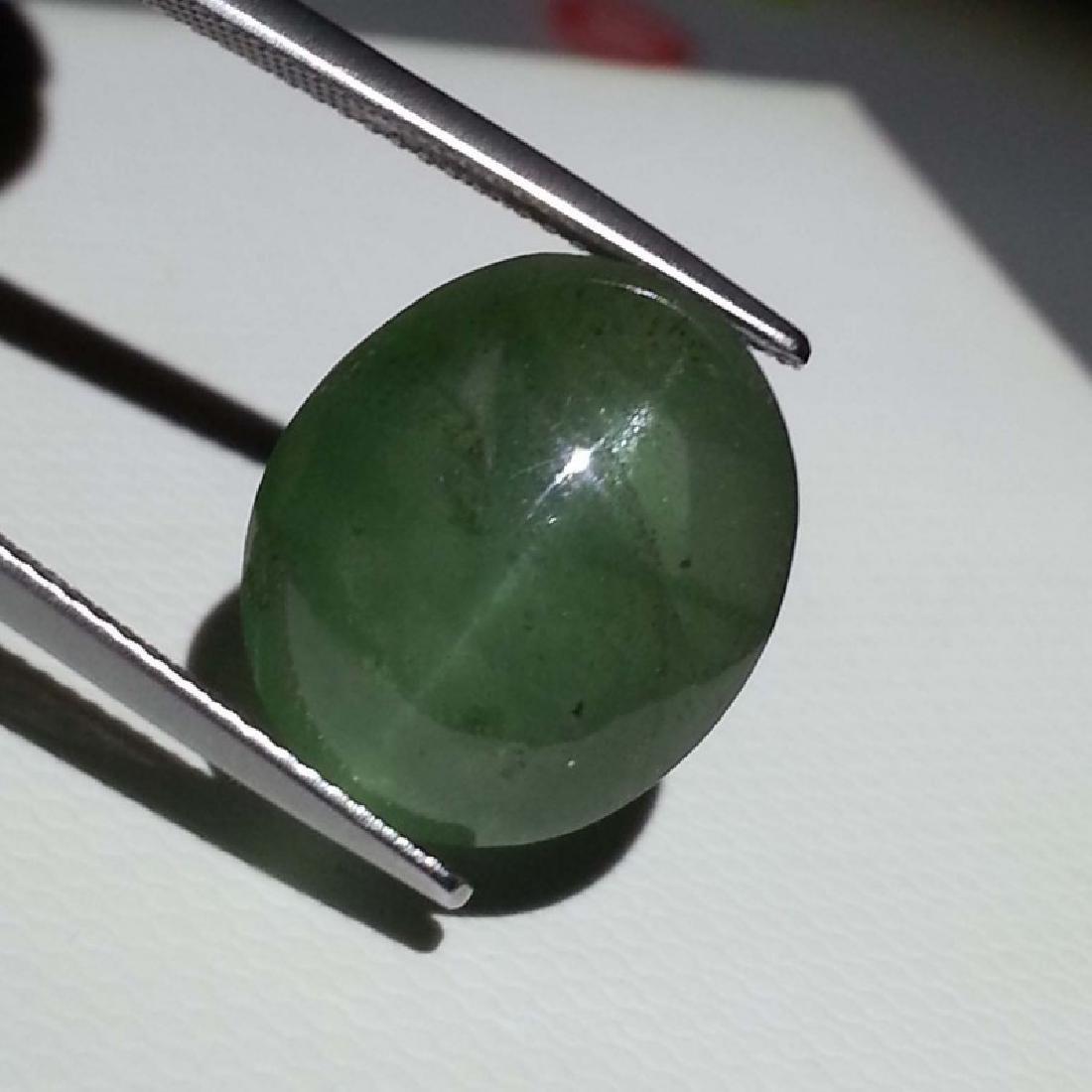 25.75 ct Alexandrite Color Natural Apatite Cat's Eye