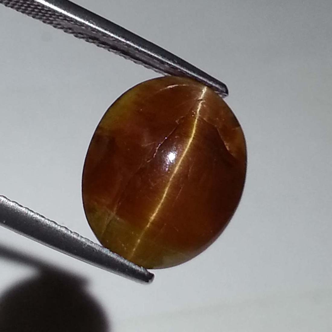 7.16 ct Top Quality Glowing Honey Natural Apatite cat's - 2