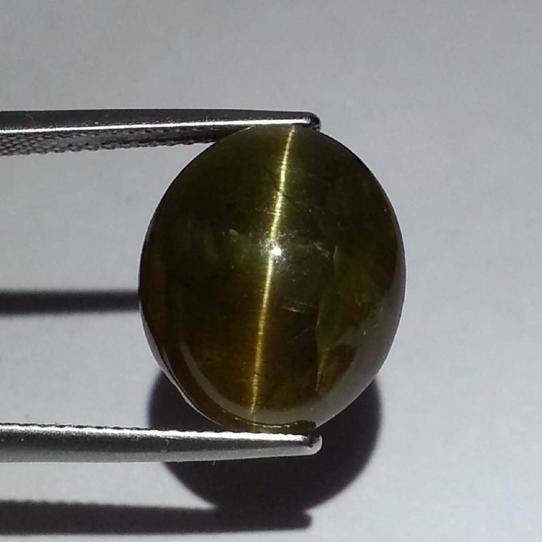 8.47 ct Top Grade Glowing Honey Natural Apatite cat's