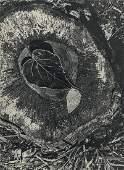 ANSEL ADAMS - Leaf, Frost, Stump, October Morning,