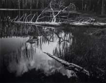 ANSEL ADAMS - Siesta Lake, Yosemite Nat'l Park, 1958