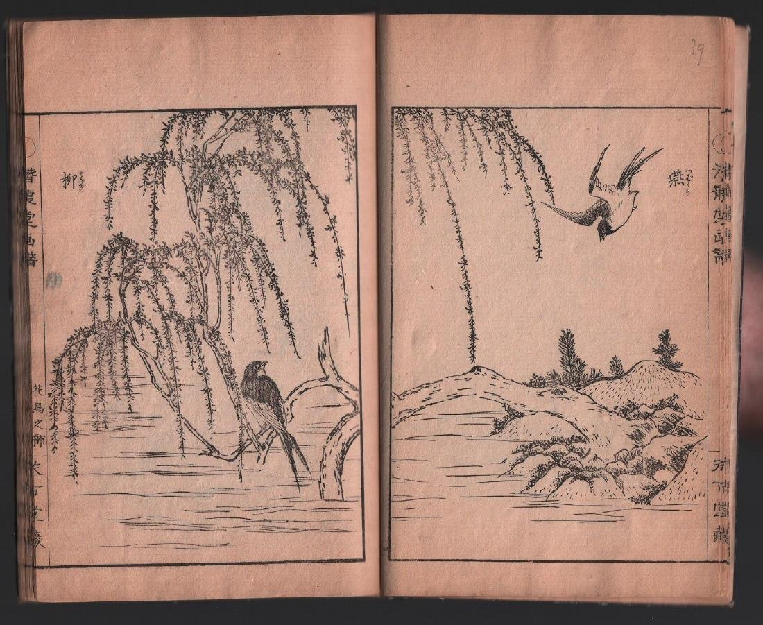 Unknown Woodblock Ehon (woodblock printed book) with - 2