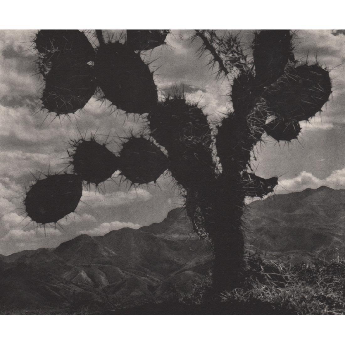 ANTON BRUEHL - On the Road to Toluca