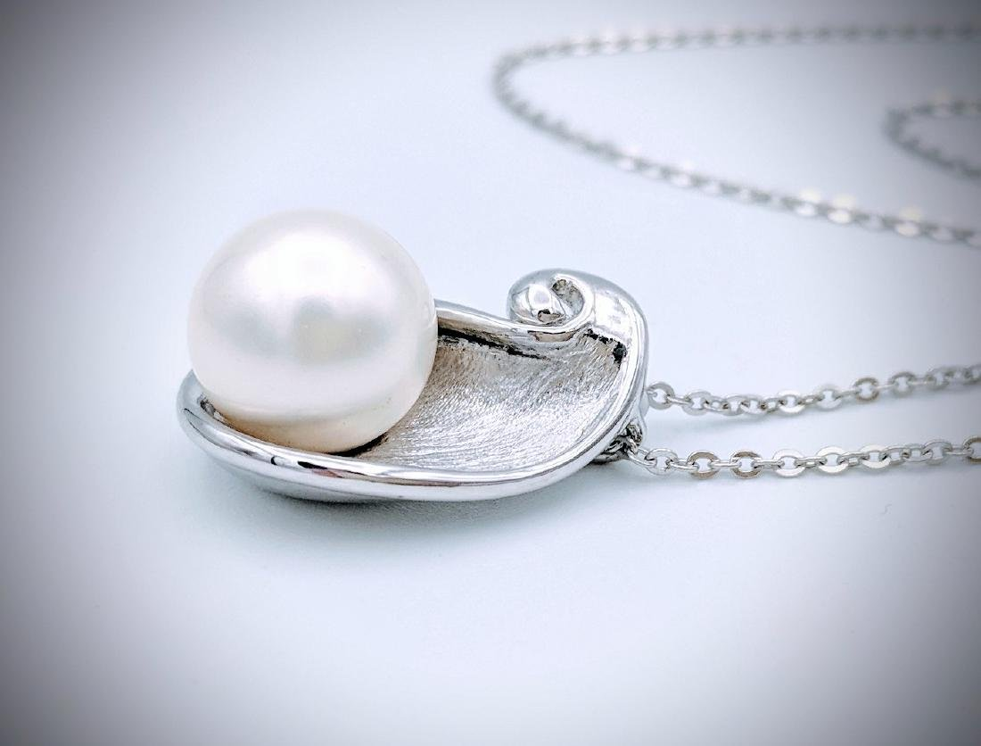 Sterling Silver Necklace & Pearl in Oyster Shell - 3
