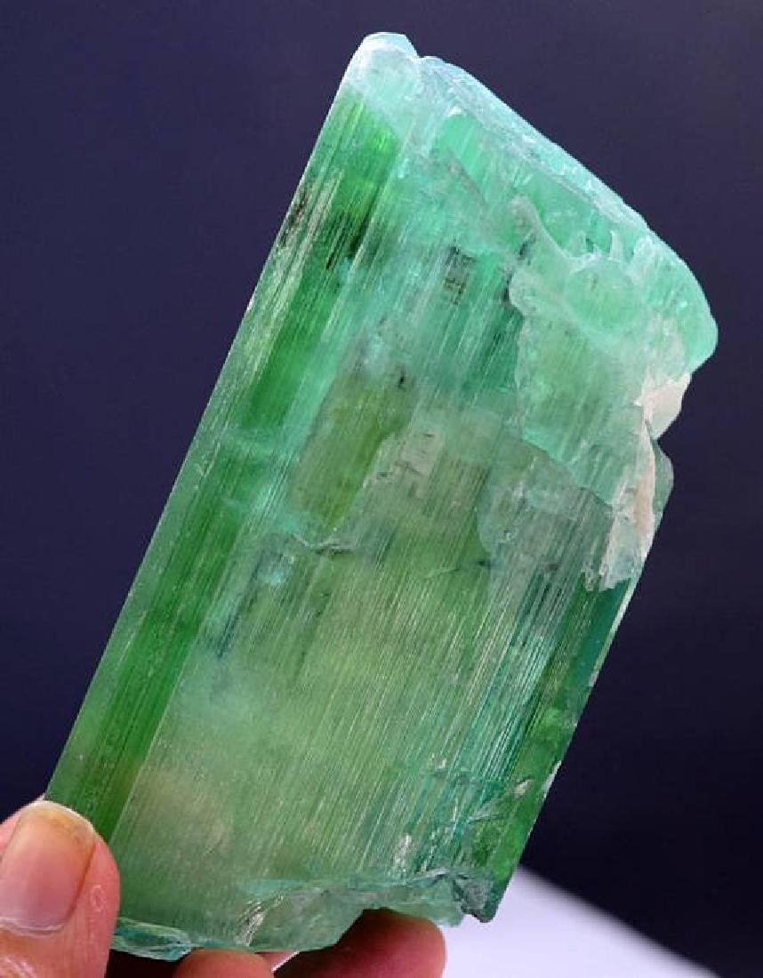 Top Quality terminated & Undamaged Green-Color Kunzite - 5