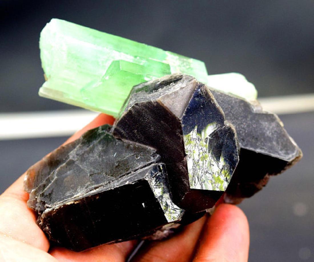 146 Gram Terminated & Undamaged Lush Green Kunzite - 2