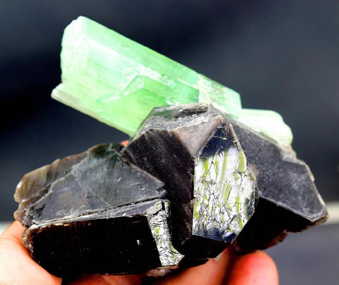 146 Gram Terminated & Undamaged Lush Green Kunzite - 3