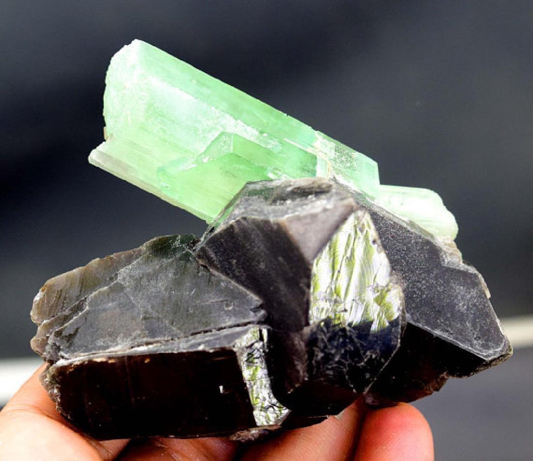 146 Gram Terminated & Undamaged Lush Green Kunzite - 4