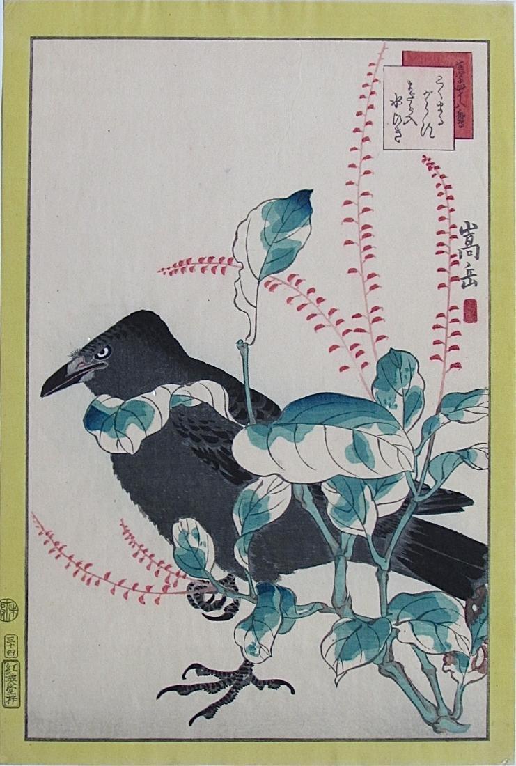 Sugakudo -  Crow