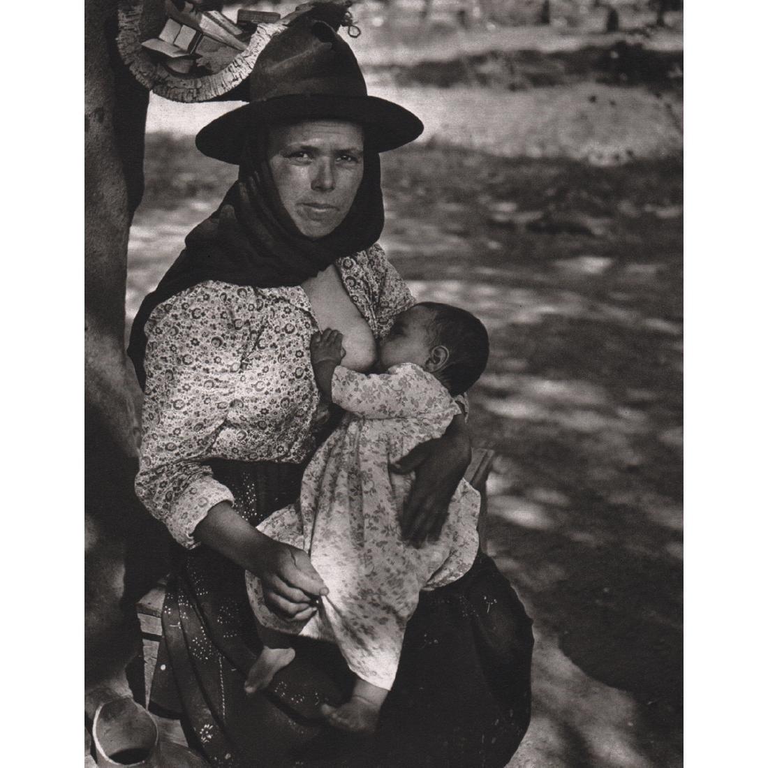 JEAN DIEUZAIDE - Algarve, 1954