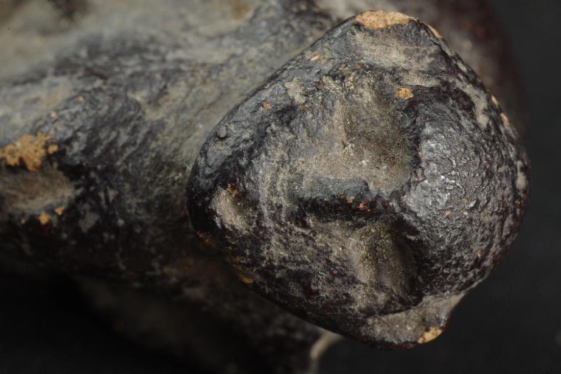 Old protective Sulawesi talisman monkey figure - - 9