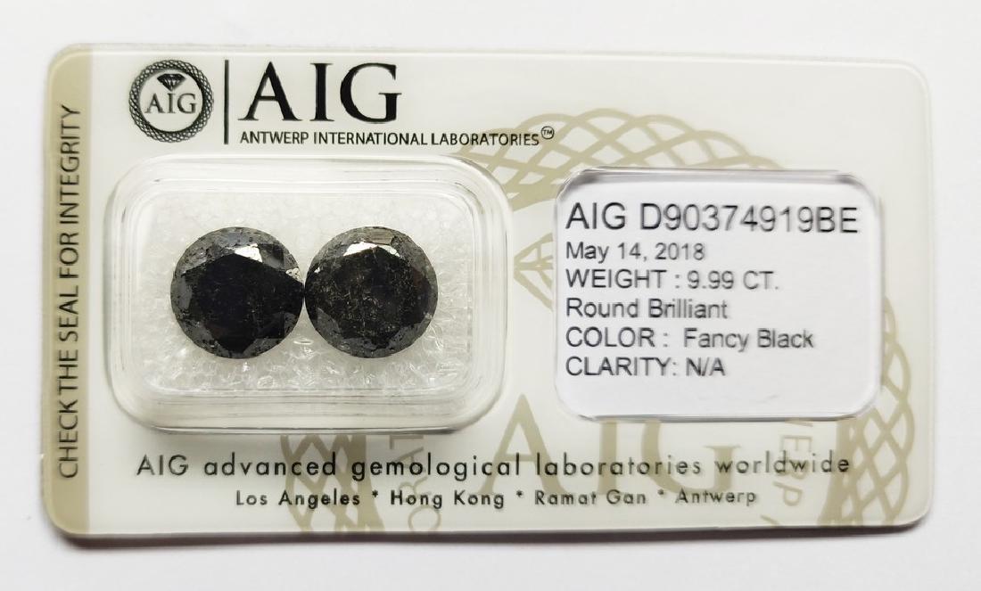 Couple of 2 Fancy Black Diamond Round Brilliant 9.99 ct
