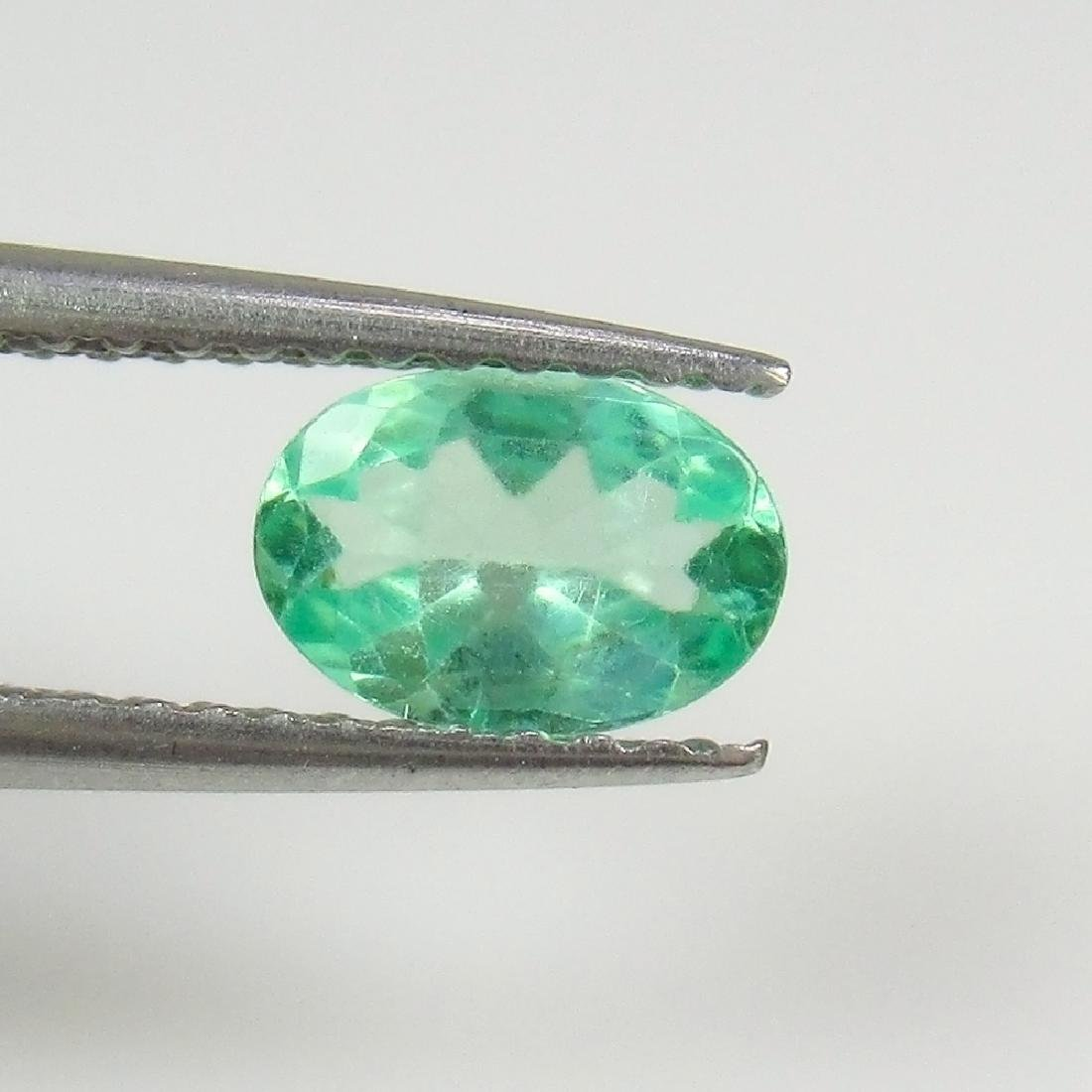 0.65 Ctw Natural Green Apatite Oval Cut