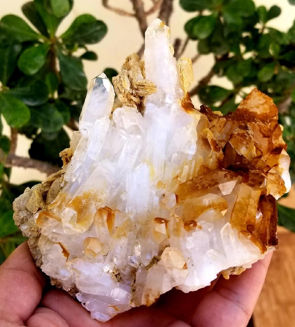 591 grams beautiful fedan quartz combined crystals with