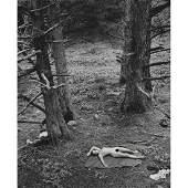 WYNN BULLOCK - Girl and Dog in Forest, 1958