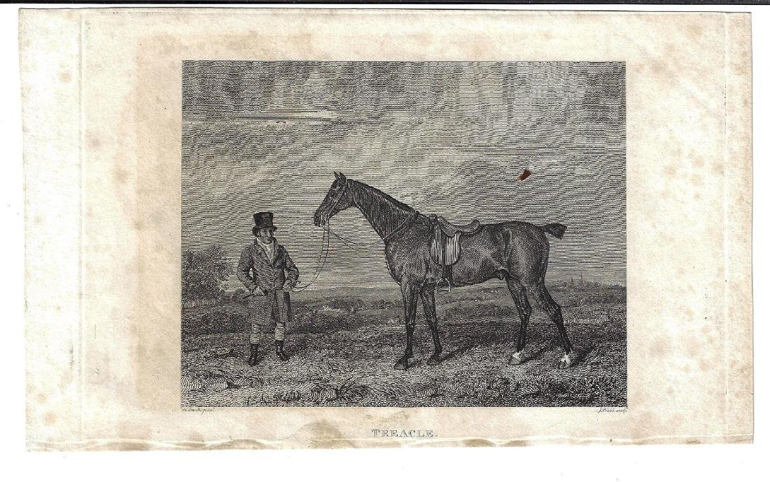 c1820 Engravings of Horse Racing and Hunt Map - 2